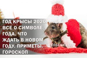 год крысы символ