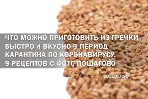 Что можно приготовить из гречки быстро и вкусно в период карантина по коронавирусу. 9 рецептов с фото пошагово